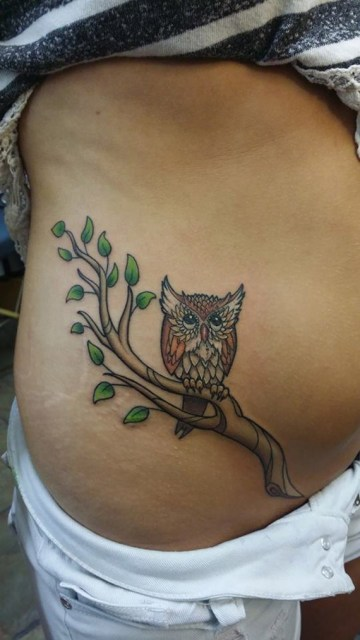 Owl on a Branch Belly Tattoo