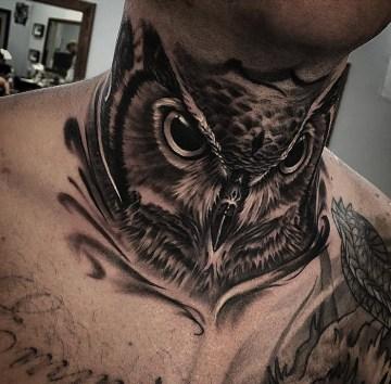 Guys Neck Owl