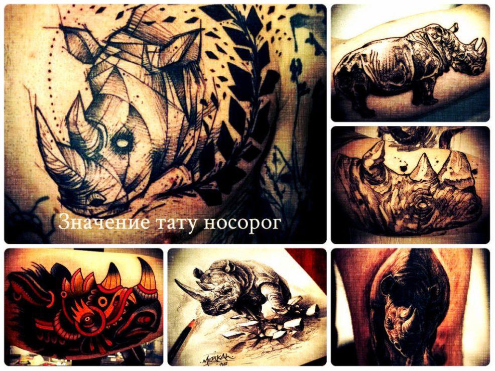 значение тату носорог прикольные рисунки на фото готовых