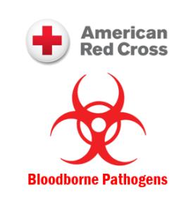 Blood Borne Pathogen