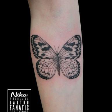 蝶々 butterfly
