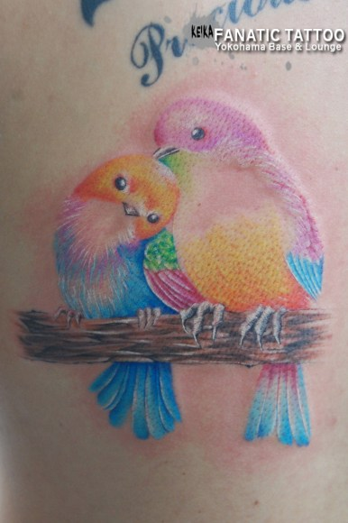 小鳥 birds