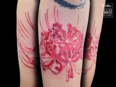 彼岸花 cluster amaryllis hurricane lily
