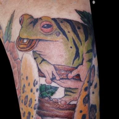 青蛙神 seiashin frog