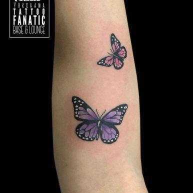蝶々 butterflies
