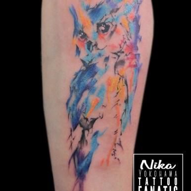 watercolor 水彩 ウォーターカラー フクロウ