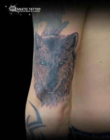 wolf オオカミ