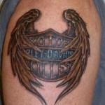, Dessin Tribal : 25 motifs de tatouage de bouclier puissants  (En images)