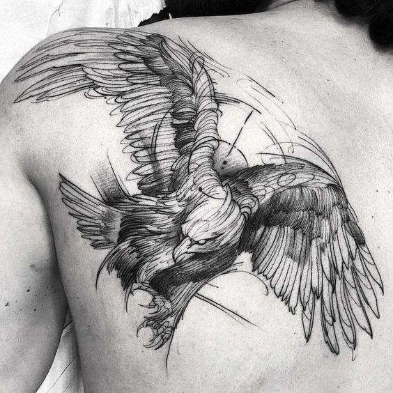 Un joli oiseau assez grand et visible
