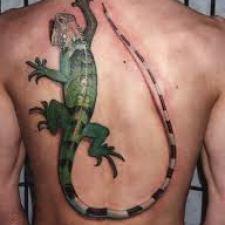 Signification de tatouage de lézard 17