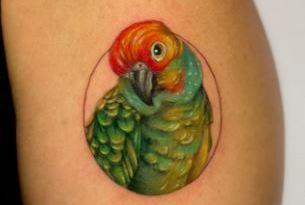 , 70 tatouages, idées et significations de perroquets colorés  (En images)