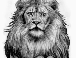 Roaring Lion Tattoo Drawing On Log Wall