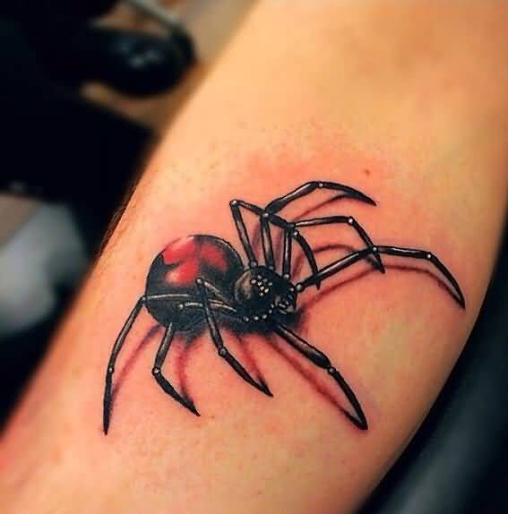 3D Spider Tattoo Ideas And 3D Spider Tattoo Designs Page 6 Ideas And Designs