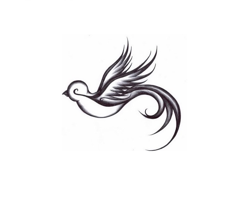 Dove Tattoos Designs Ideas And Meaning Tattoos For You Ideas And Designs