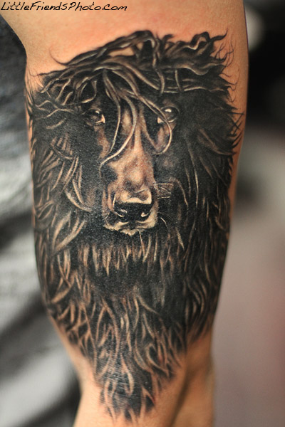 Afghan Hound Tattoo By Gary Pirisi At Windy City Inkdogs Ideas And Designs
