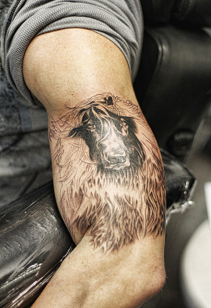 Little Friends Photo Afghan Hound Tattoo By Gary Pirisi Ideas And Designs
