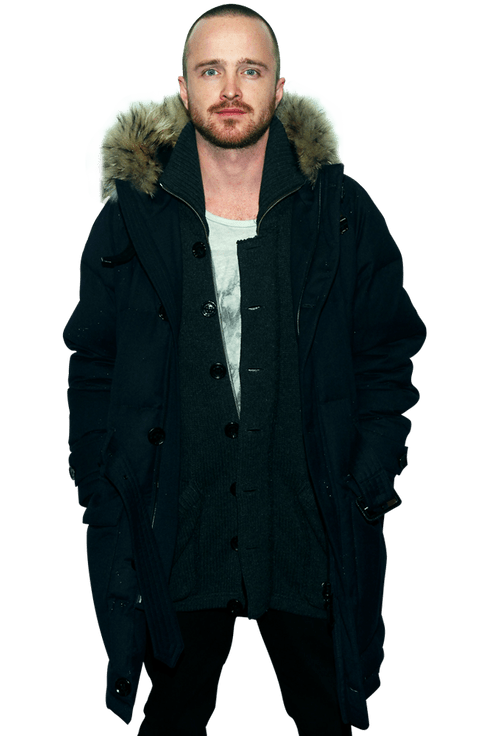 Breaking Bad's Aaron Paul Is A Serious Romantic Vulture Ideas And Designs