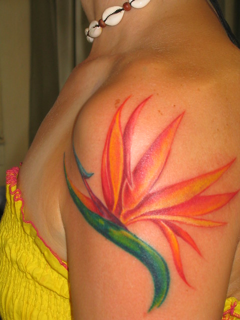 Bird Of Paradise Tattoo Flickr Photo Sharing Ideas And Designs