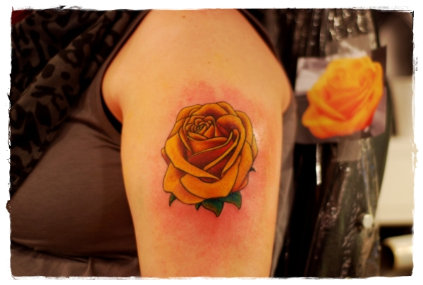 Yellow Rose Tattoos Meaning Tattoo Font Downloads Photo Ideas And Designs