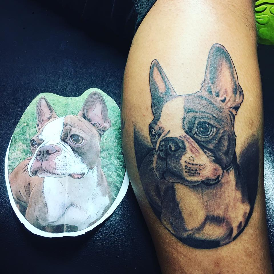 Boston Terrier Tattoos Over 20 Pictures Ideas And Designs