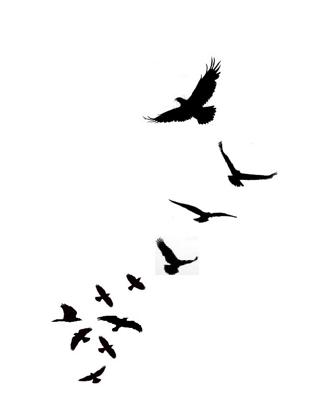 Silhouette Swallow Tattoos Page 2 Clipart Best Clipart Ideas And Designs