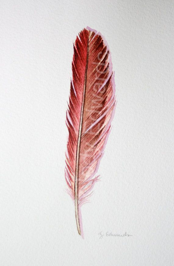 Red Cardinal Feather Tattoo Idea This Is What I Have Ideas And Designs