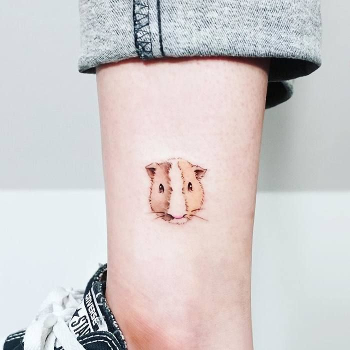 Best 25 Pig Tattoos Ideas On Pinterest Pig Drawing Ideas And Designs