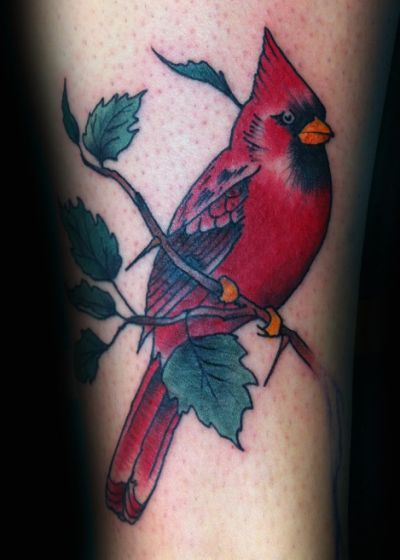 Best 25 Cardinal Tattoos Ideas On Pinterest Red Ideas And Designs