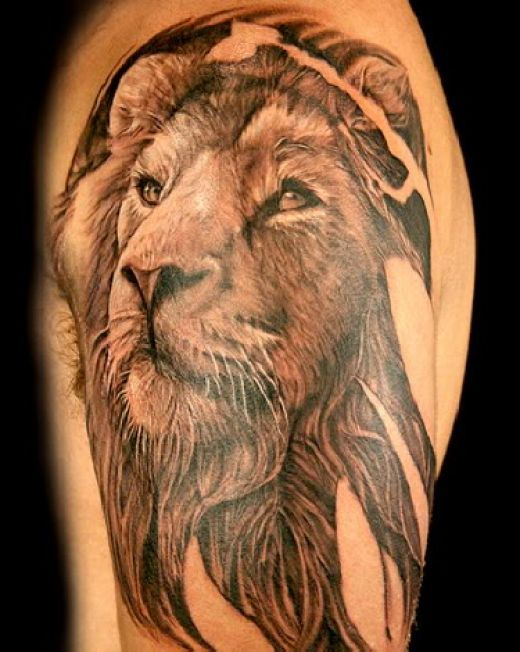 11 Best 3D Lion Tattoo Images On Pinterest Cool Tattoos Ideas And Designs