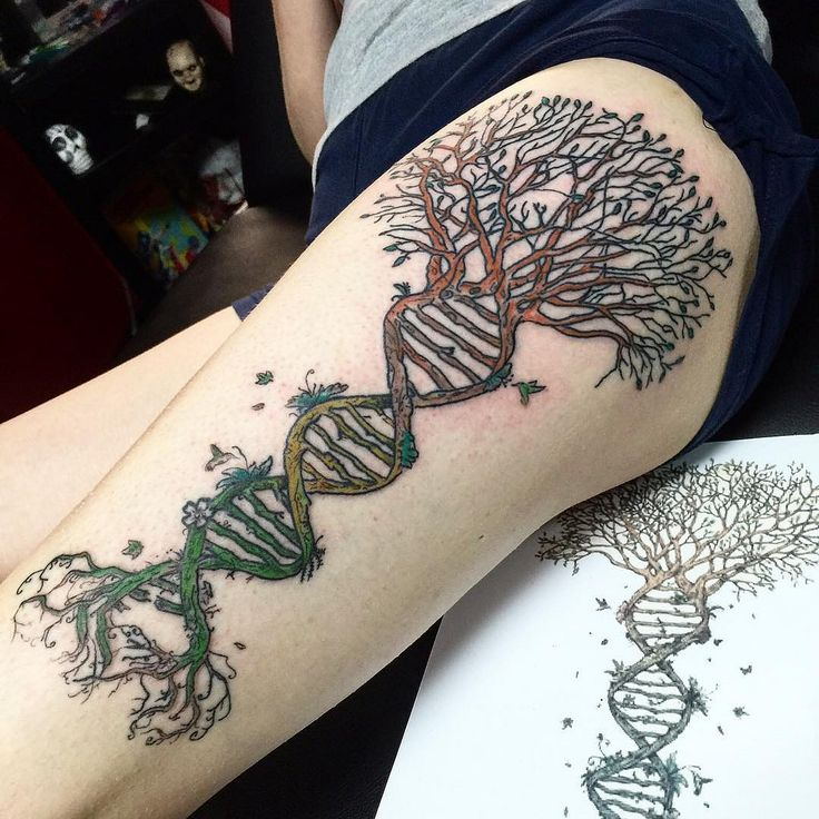 Dna Tree Of Life Tattoo Google Search Tattoos Dna Ideas And Designs