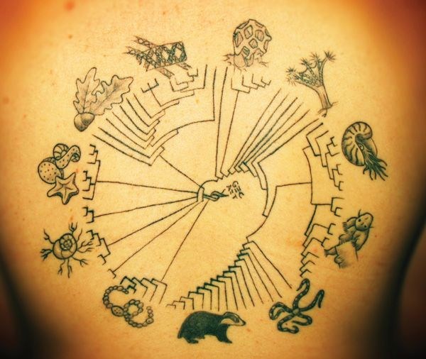 247 Best Science Tattoos Images On Pinterest Science Ideas And Designs