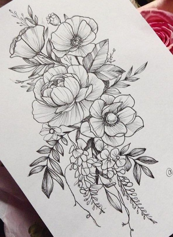 2701 Best Coloring Pages Images On Pinterest Coloring Ideas And Designs