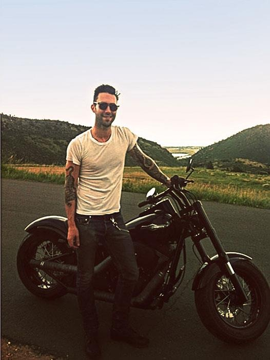 17 Best He Gets His Own Board Adam Levine Images On Ideas And Designs