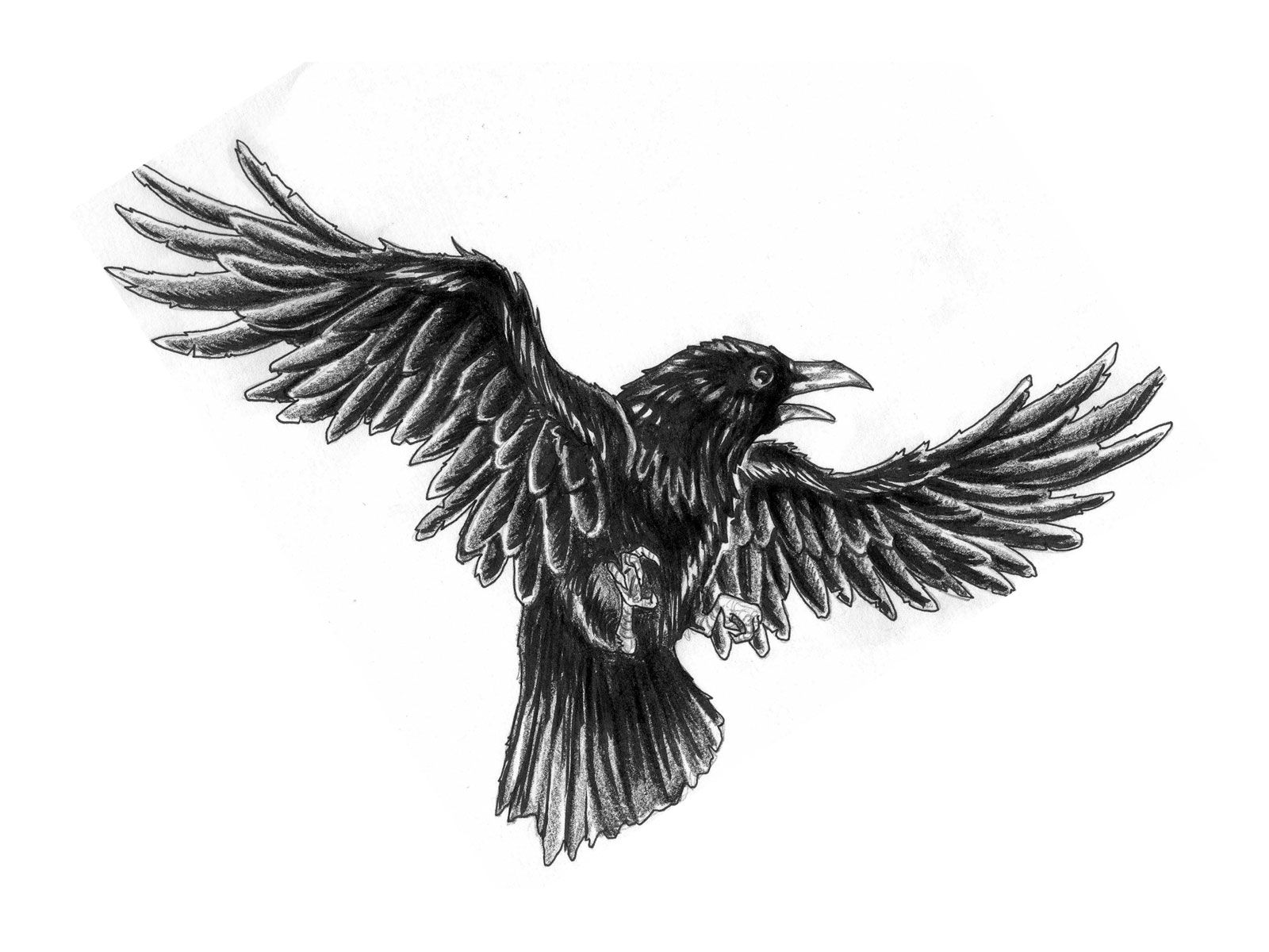 Crow Tattoo Sketch Tattoo Black Crow Tattoos Crow Ideas And Designs
