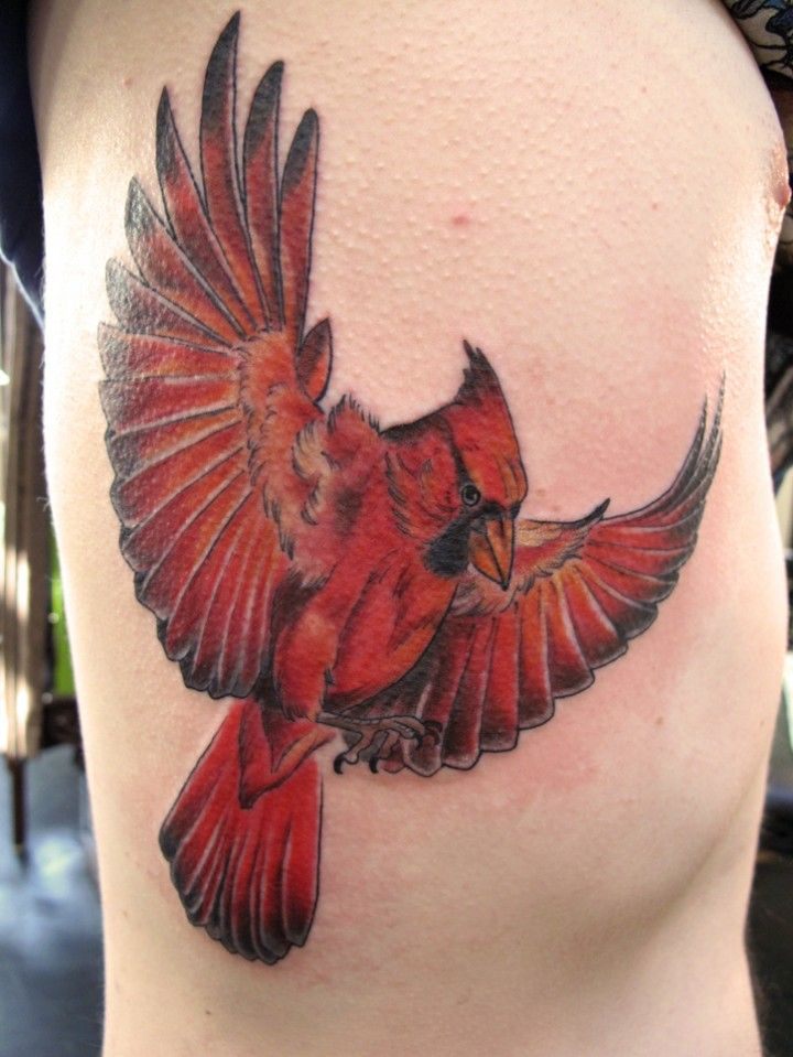 Cardinal Love The Coloring In This One Tats Cardinal Ideas And Designs