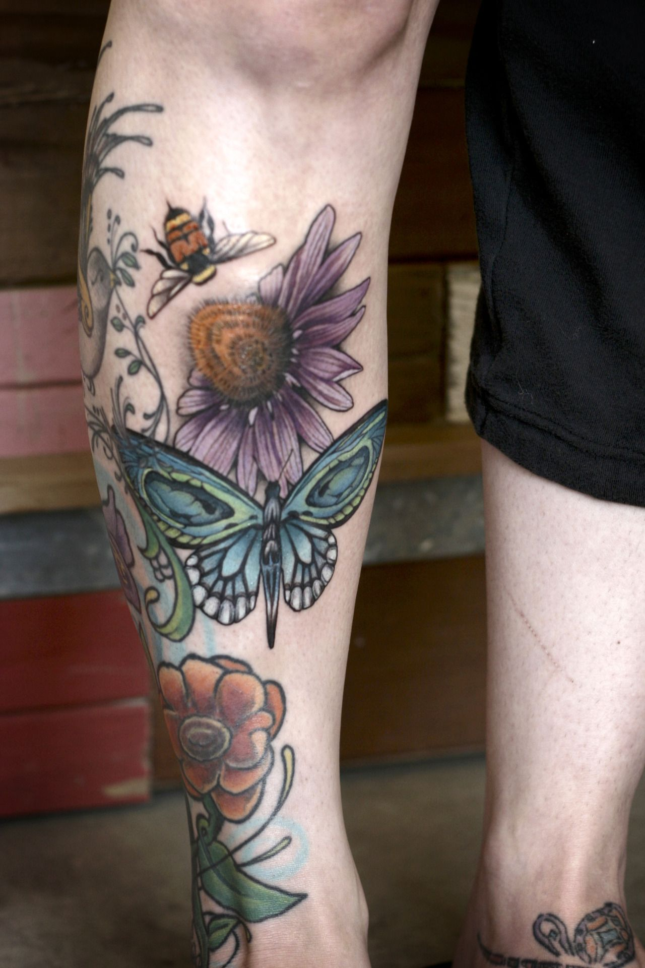 Bee Echinacea And Skull Erfly By Alice Kendall Ideas And Designs