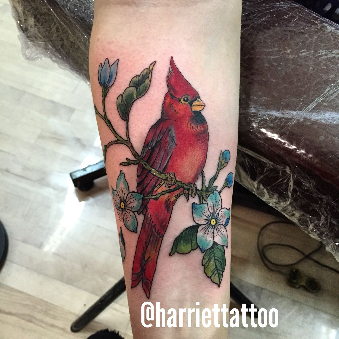 Bird Cardinal Tattoo … Tattoos Cardinal Tattoos Ideas And Designs