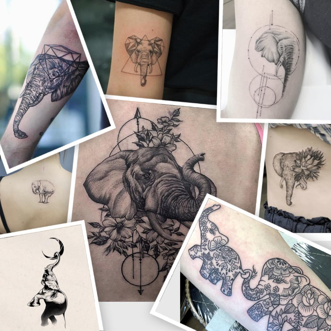 Elephant Tattoo Meaning And Top 50 Ideas Legit Ng Ideas And Designs