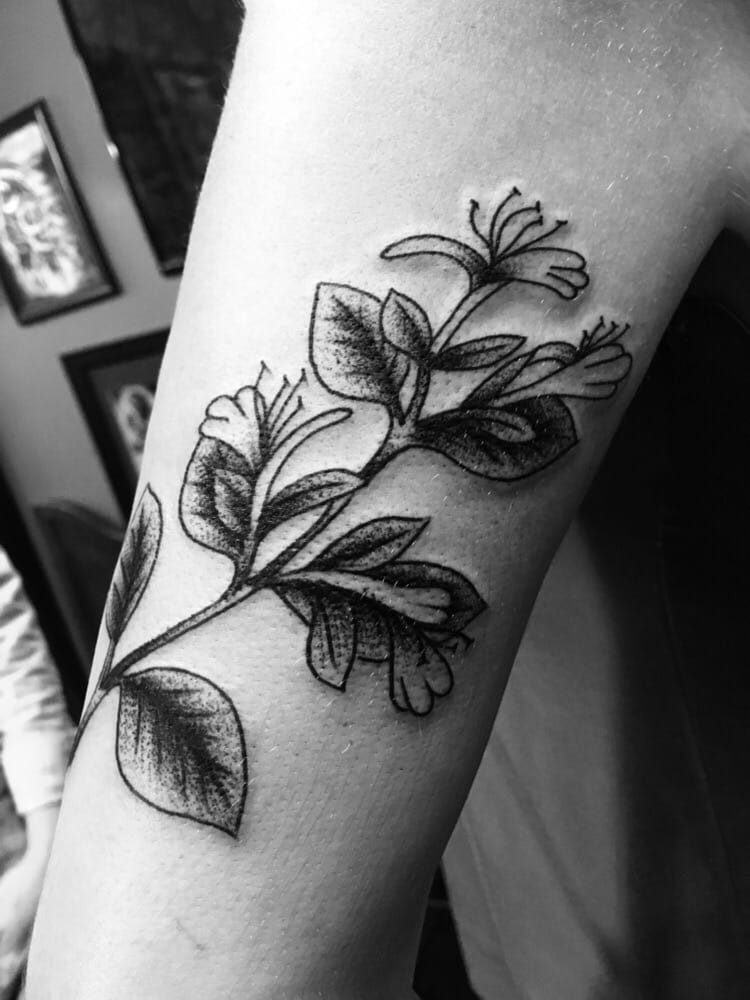 Honeysuckle With Stippling Work By Money Mike Yelp Ideas And Designs