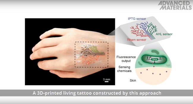 """Mit's Developed 3D Printed """"Living Tattoo"""" – Bornnewz Ideas And Designs"""