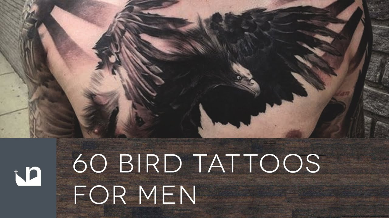 60 Bird Tattoos For Men Youtube Ideas And Designs