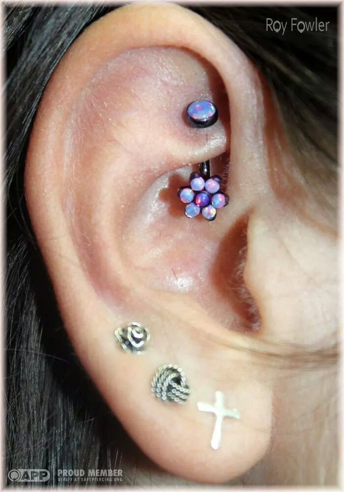 Healed Rook With Anatometal J Curve And Anatometal Parts Ideas And Designs
