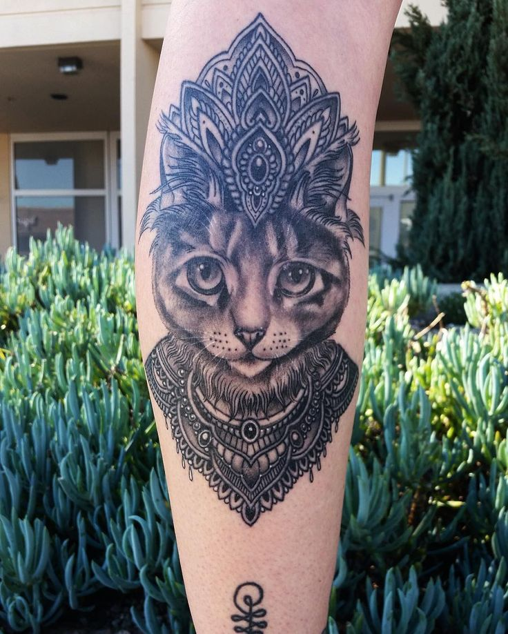 1000 Images About Animal Tattoo Designs On Pinterest Ideas And Designs