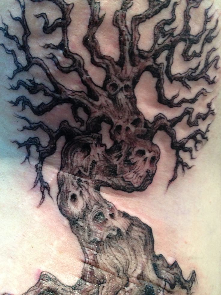 64 Best Images About Tree Tattoo Ideas On Pinterest Ideas And Designs