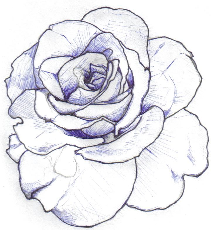Rose Outline Minimal Shading Tattoo Inspiration Ideas And Designs