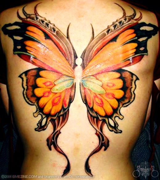 1000 Images About Butterfly Tattoo On Pinterest Wings Tribal Butterfly Tattoo And 3D Ideas And Designs