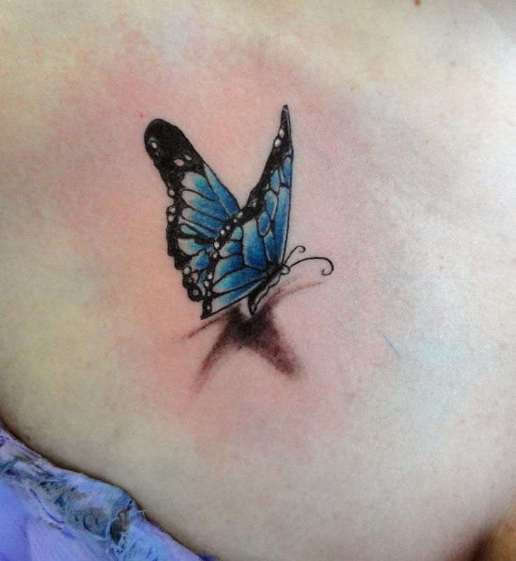 3D Butterfly Ink Tattoo Reals Tats Pinterest Ink Ideas And Designs