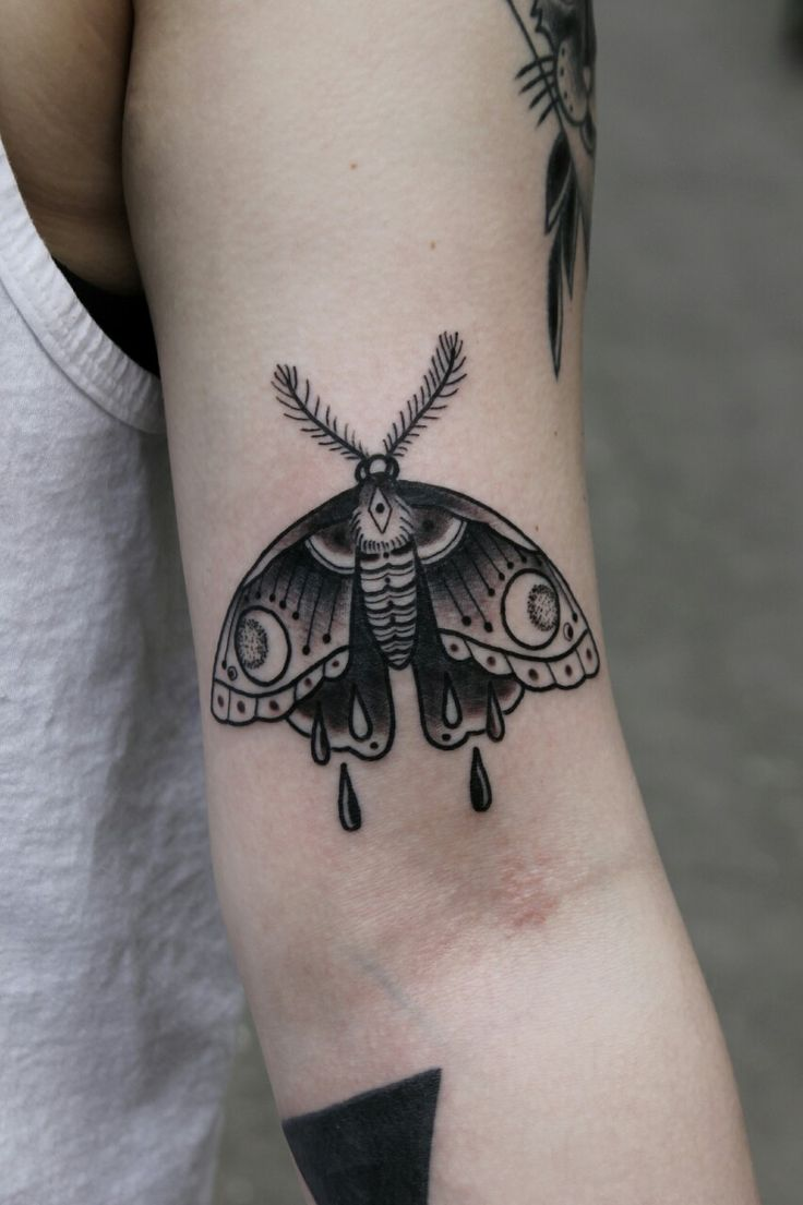 25 Best Ideas About Moth Tattoo On Pinterest Moth Ideas And Designs