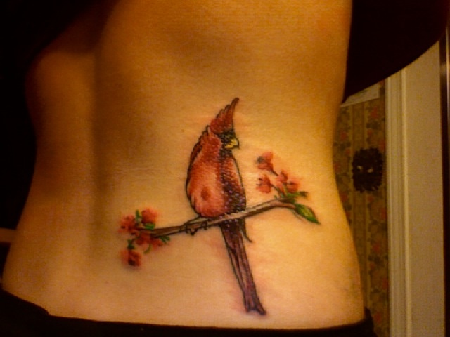 28 Cardinal Rose Tattoo Asheboro 301 Moved Ideas And Designs