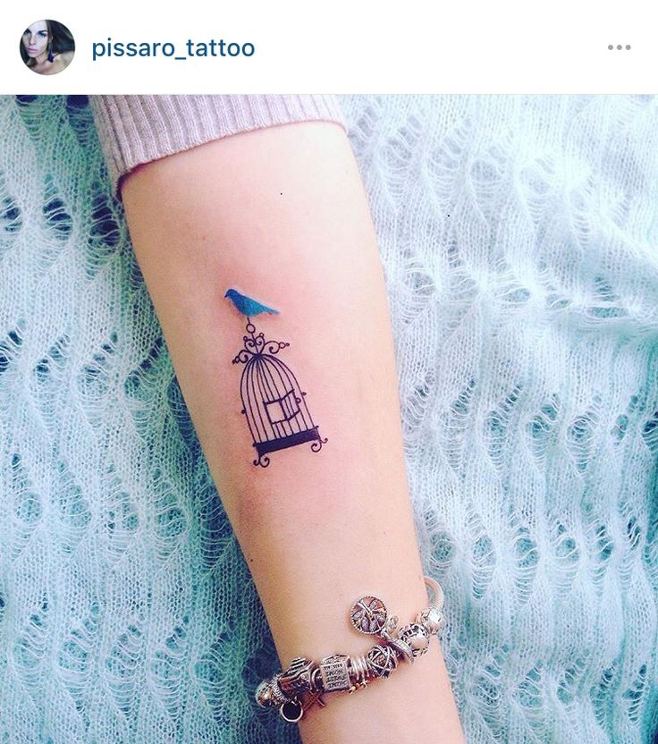 17 Best Ideas About Bird Cage Tattoos On Pinterest Cage Ideas And Designs